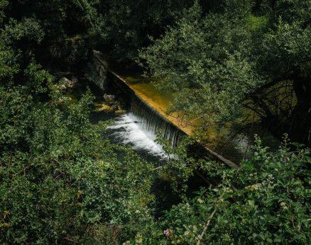 Where the river runs mute